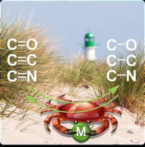 carbon dioxide research paper